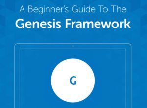 What is the Genesis Framework?